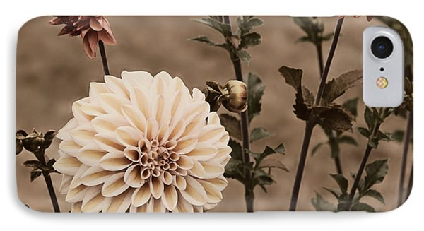 IPhone Case featuring the photograph Antiqued Dahlias by Jeanette C Landstrom