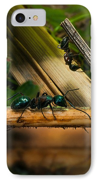 Ants Adventure 2 IPhone 7 Case