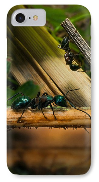 Ants Adventure 2 IPhone Case by Bob Orsillo