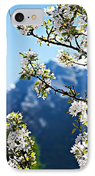 Apple Blossoms Frame The Rockies Phone Case by Lisa Knechtel
