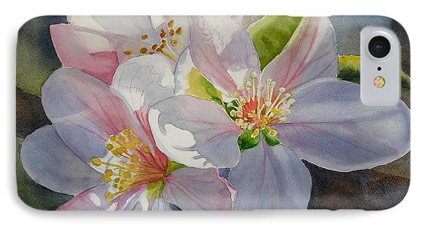 Apple Blossoms In Sunlight IPhone Case