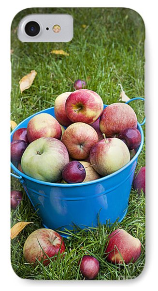 Apple Harvest IPhone Case by Elena Elisseeva