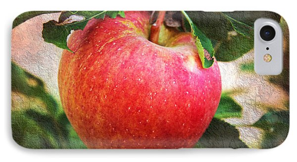 Apple On The Tree IPhone Case by Andee Design