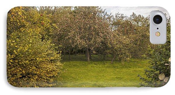 Apple Orchard IPhone Case by Amanda Elwell
