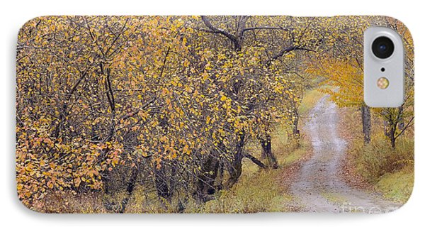 Apple Orchard Road Phone Case by Alan L Graham