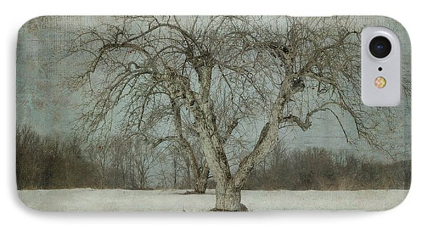 IPhone Case featuring the photograph Apple Tree In Winter by Vicki DeVico