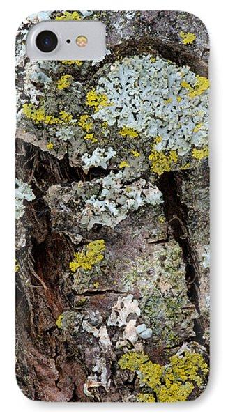 Apple Tree Lichens IPhone Case