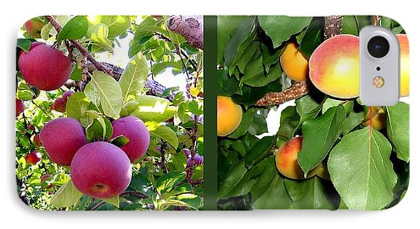 IPhone Case featuring the photograph Apples And Apricots by Will Borden
