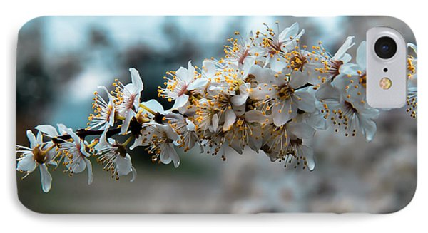 Apples Blooming IPhone Case by Robert Bales