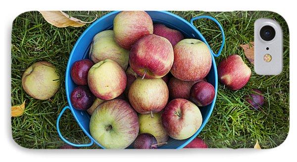 Apples IPhone Case by Elena Elisseeva