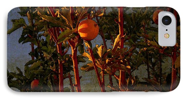 IPhone Case featuring the photograph Apples by Timothy Bulone