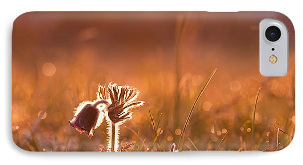 IPhone Case featuring the photograph April Morning by Kennerth and Birgitta Kullman