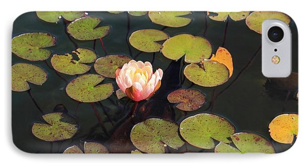 Aquatic Garden With Water Lily IPhone Case