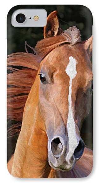 Arabian Gelding IPhone Case