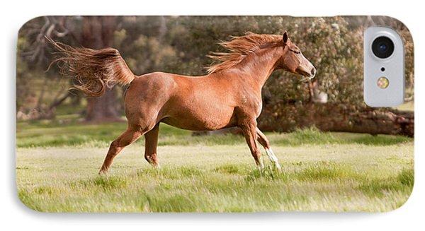 Arabian Horse Running Free Phone Case by Michelle Wrighton