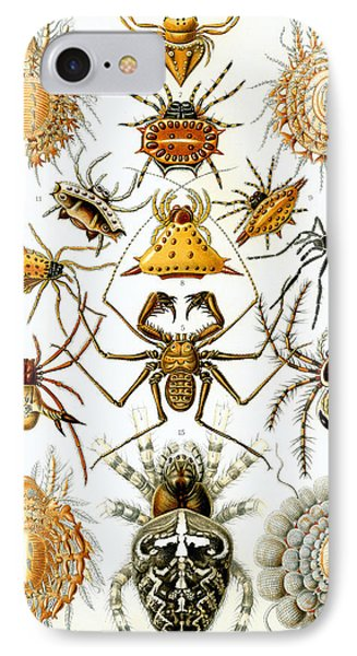 Arachnida IPhone Case