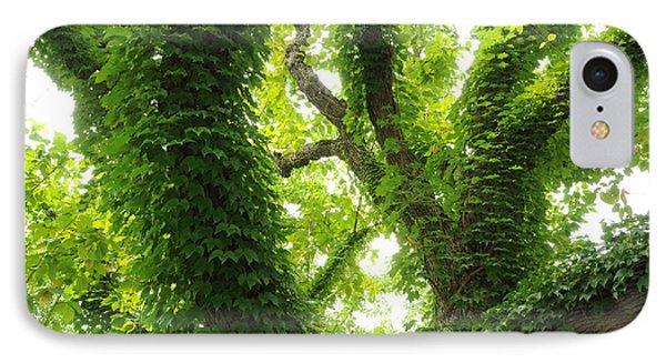 Arboretum IPhone Case by Gerald Hiam