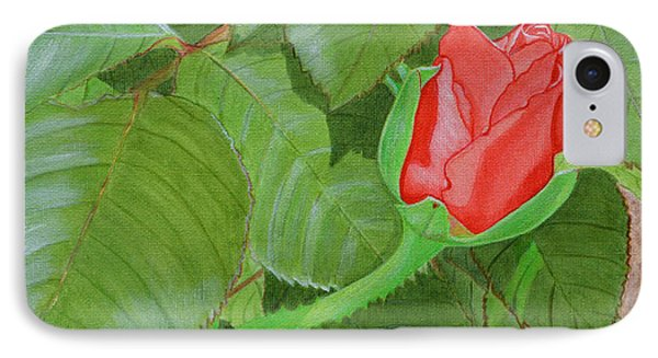 Arboretum Rose IPhone Case
