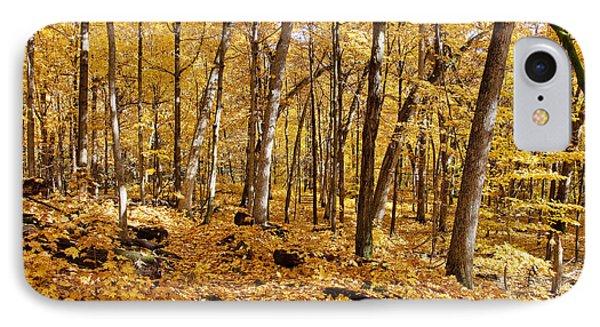 Arboretum Trail IPhone Case by Steven Ralser