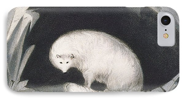 Arctic Fox, From Narrative Of A Second IPhone Case by Sir John Ross