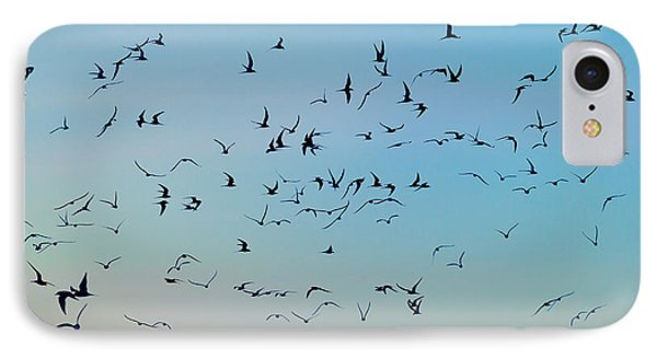 Arctic Terns Flying, Reykjavik, Iceland IPhone Case by Panoramic Images