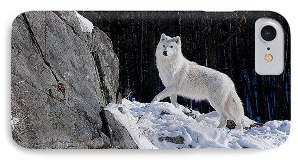 IPhone Case featuring the photograph Arctic Wolf On Rock Cliff by Wolves Only