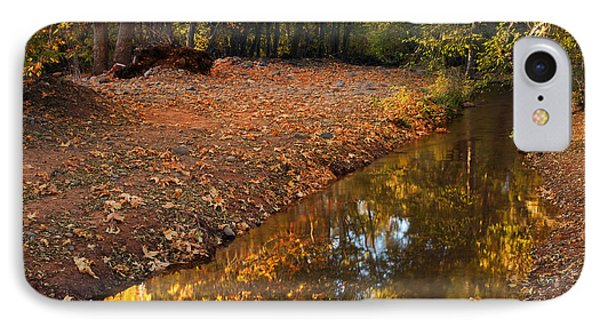 Arizona Autumn Reflections IPhone Case