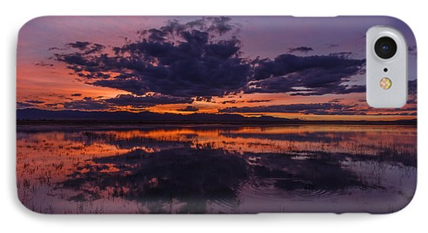 IPhone Case featuring the photograph Arizona Beauty by Beverly Parks