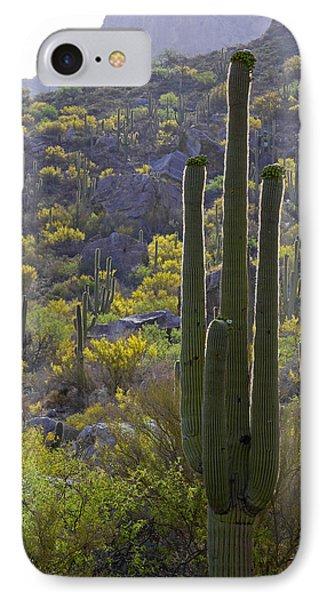 Arizona Desert IPhone Case by Samuriah Robinson