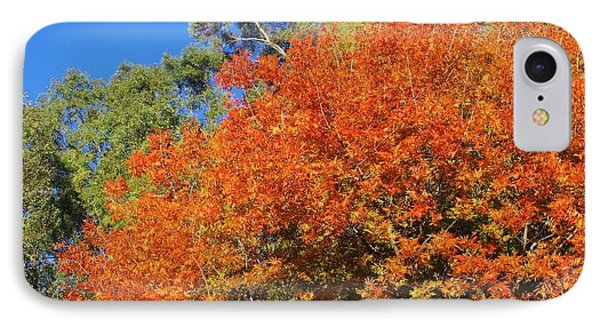 Arizona Fall 3 IPhone Case by David Rizzo