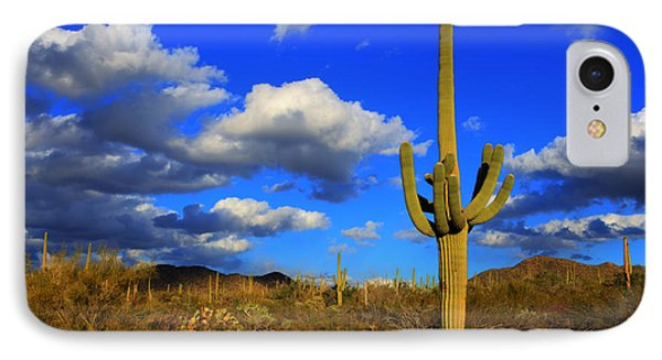 Arizona Landscape 2 Phone Case by Bob Christopher