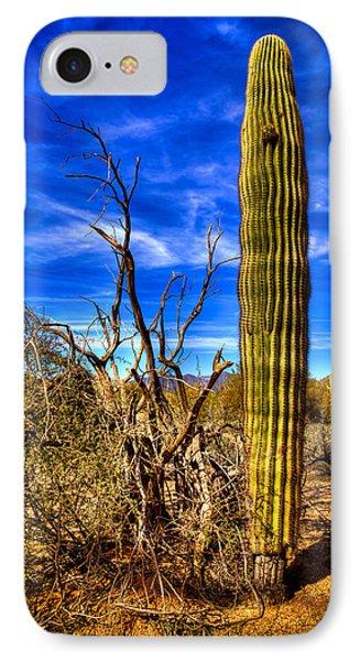 Arizona Landscape IIi Phone Case by David Patterson