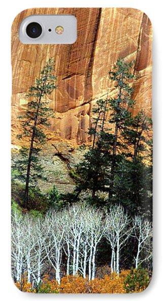 Arizona's Betatkin Aspens IPhone Case by Ed  Riche