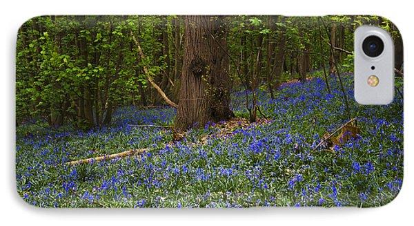 Around A Tree Phone Case by Svetlana Sewell
