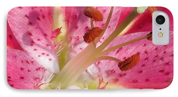 Artistry Of The Pink Lily IPhone Case