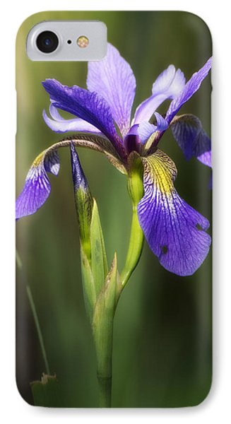 Artsy Iris IPhone Case by Shelly Gunderson