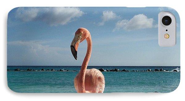 IPhone Case featuring the photograph Aruba Hairy Eyeball by HEVi FineArt