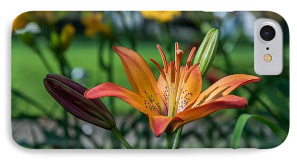 Asiatic Lily IPhone Case by Mark Papke