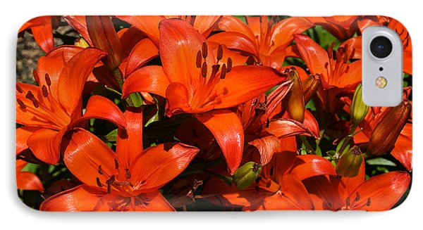 IPhone Case featuring the photograph Asiatic Lily by Sue Smith