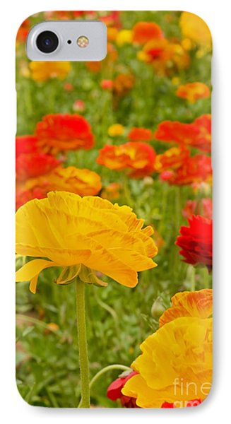 Asiatic Ranunculus Flowers Phone Case by ELITE IMAGE photography By Chad McDermott