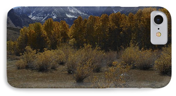 Aspen And Snow Capped Mountain IPhone Case