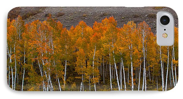 Aspen Band IPhone Case by Steven Reed