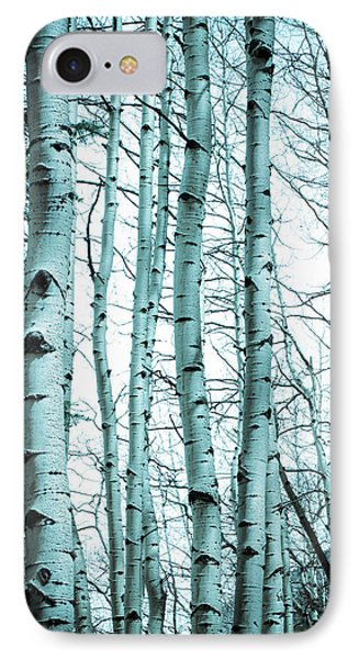 Aspen Blues IPhone Case by Debbie Karnes