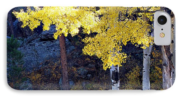 IPhone Case featuring the photograph Aspen Bright by Linda Cox