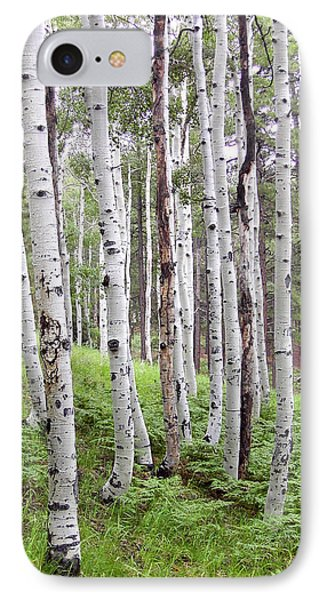 Aspen Forest IPhone Case by Laurel Powell