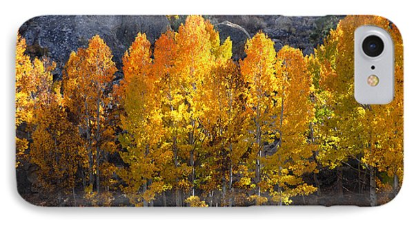 IPhone Case featuring the photograph Aspen Gold by Lynn Bauer