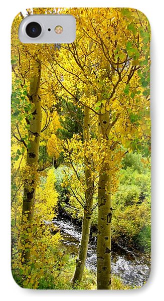 IPhone Case featuring the photograph Aspen Gold by Marilyn Diaz