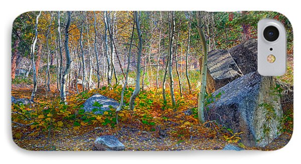 IPhone Case featuring the photograph Aspen Grove by Jim Thompson