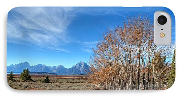 IPhone Case featuring the photograph Aspen Last Stand  by David Andersen