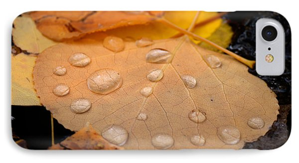 Aspen Leaf With Water Drops IPhone Case by John McArthur